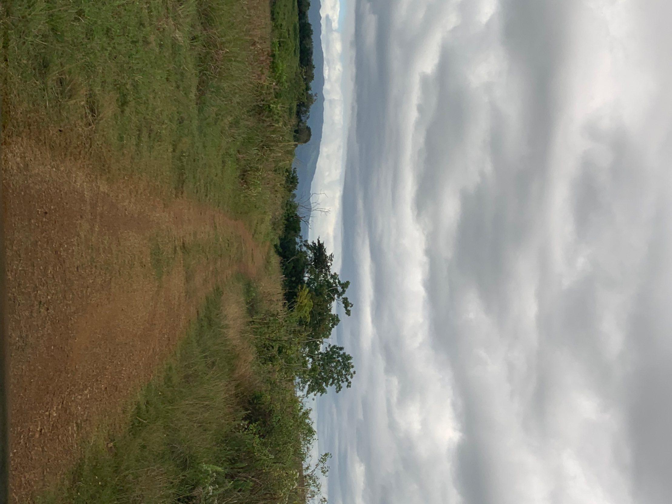 Km.hm 005 8 Carr. 308 Bo. Miradero Int. Cabo Rojo, PR 00623