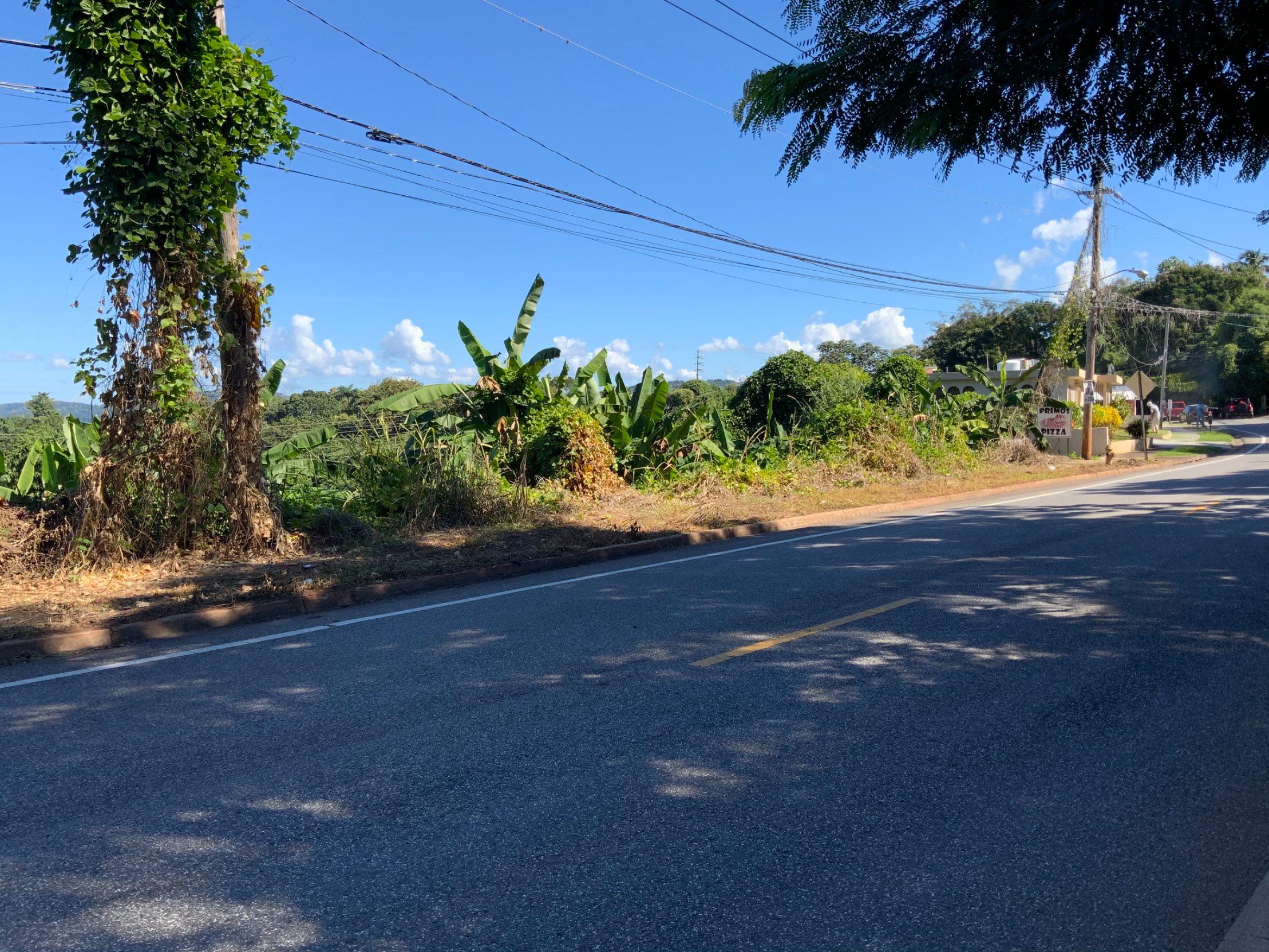 Barrio Miradero Mayaguez, PR 00681