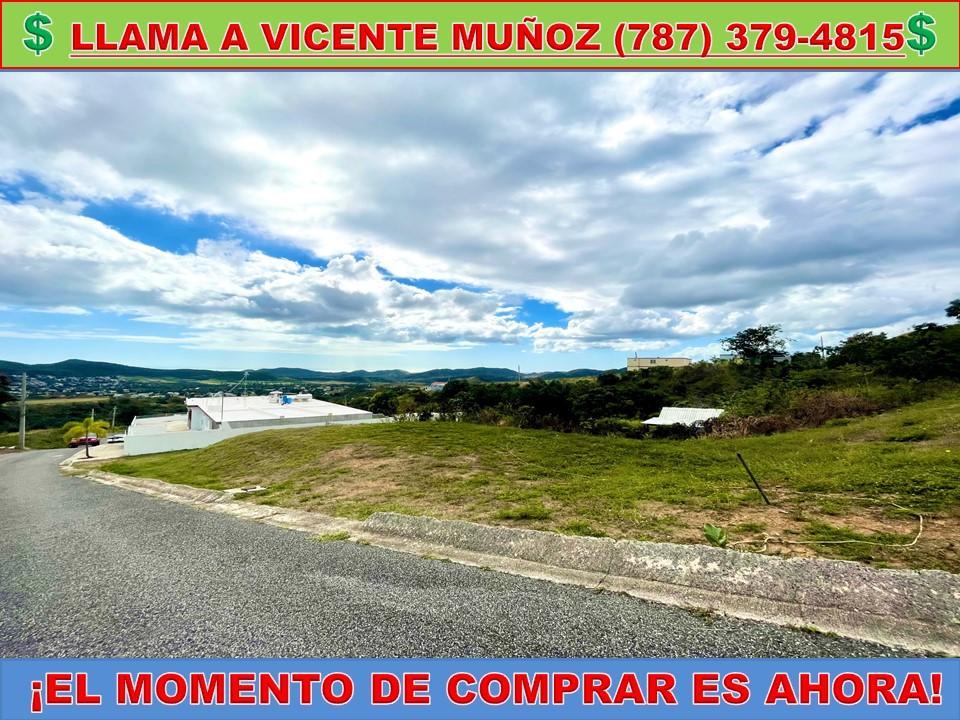 Carr 596 Sector Caribe Los Llanos 0 Coamo, PR 00769